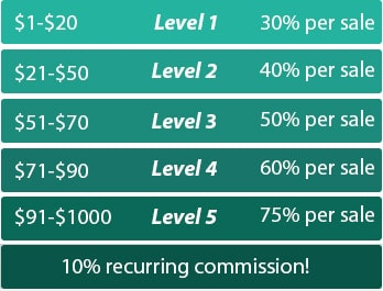 RapidVPN Affiliate Commisions and Levels