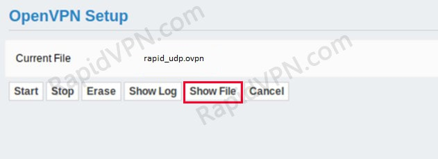 OpenVPN connection on Sabai Router - Step 4