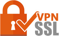 Image result for ssl vpn